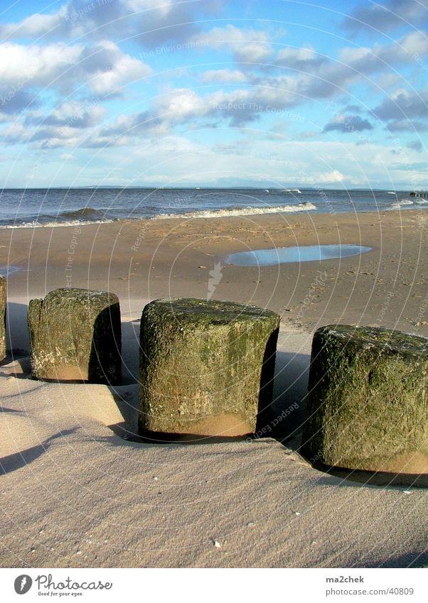 Ostseestumpfe Usedom Strand Dämmerung Meer Sand