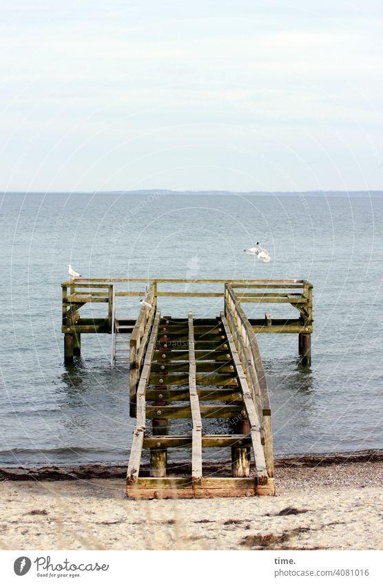 Illusion | heute kein Sitzplatz mit Aussicht. morgen auch nicht. Seebrücke strand wasser ostsee möwe kaputt steg holz bau architektur konstruktion unbegehbar