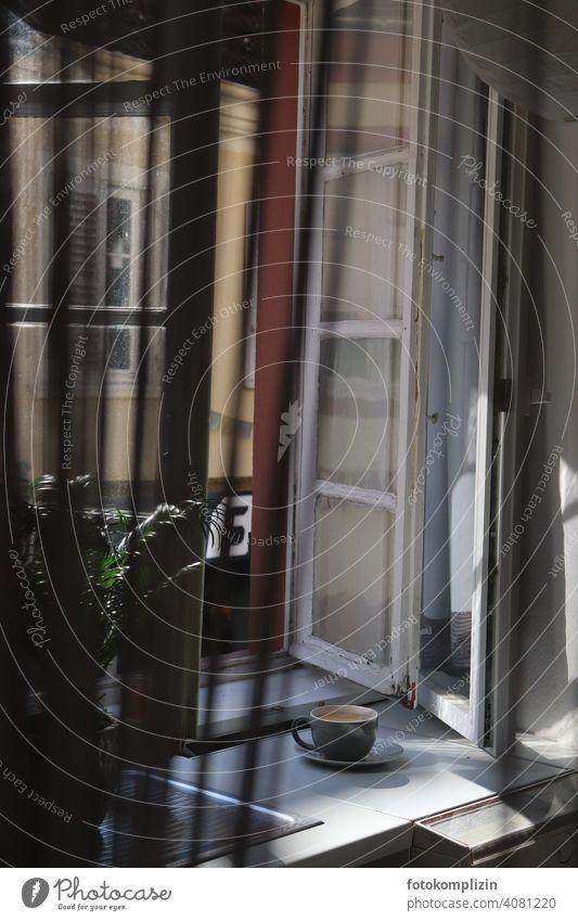 Kaffeetasse am offenen Fenster Altbaufenster Kaffeetrinken Kaffeepause Café Tasse offenes fenster genießen Genuss Pause Ausblick romantisch atmosphärisch