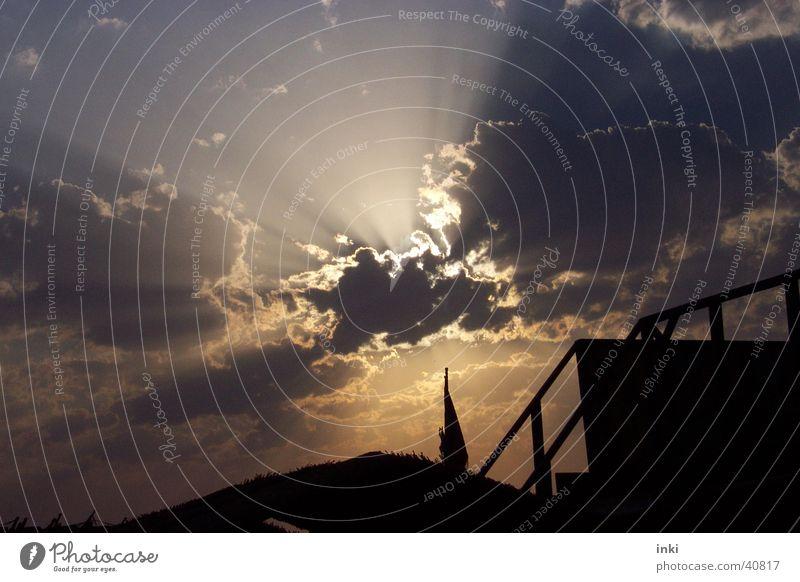 aufgerissener Abendhimmel Himmel Sonne Wolken Romantik Wildtier