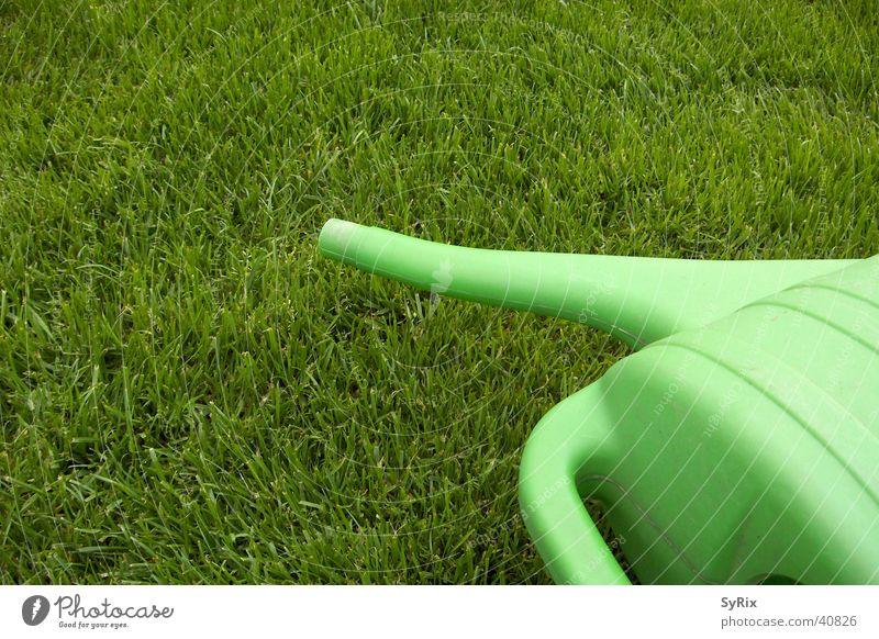 Gartenarbeit Wiese Rasen Kannen Gießkanne