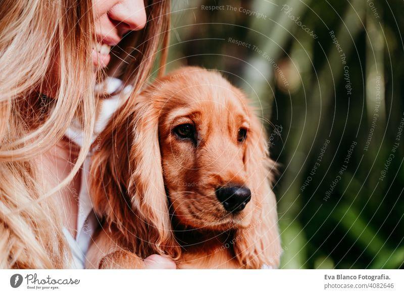 junge Frau und ihr niedlicher Cockerspaniel-Welpe im Freien Hund Haustier Park sonnig Liebe Umarmung Lächeln Rückansicht Kuss züchten Reinrassig schön blond