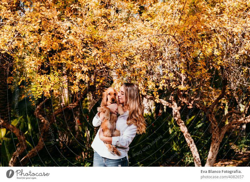 junge Frau und ihr süßer Welpe Cocker Spaniel Hund im Freien in einem Park. Sonniges Wetter, gelbe Blätter Hintergrund Haustier sonnig Liebe Umarmung Lächeln