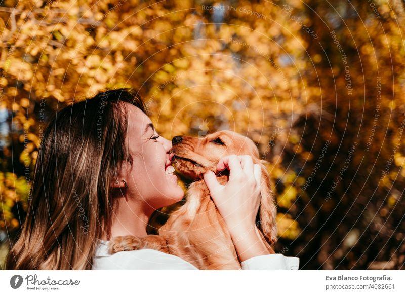 junge Frau und ihre niedlichen Welpen Cocker Spaniel Hund im Freien in einem Park. Sonniges Wetter, gelbe Blätter Hintergrund. Hund küssen Besitzer Haustier