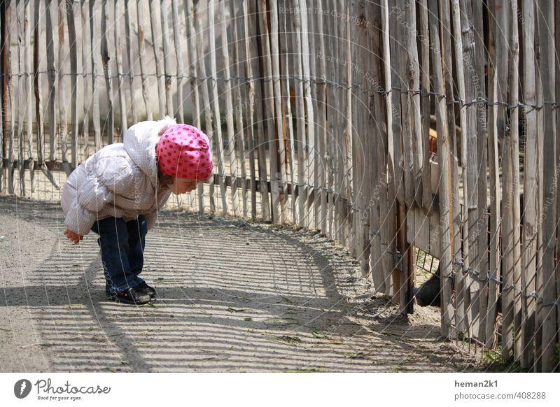 Little Miss meets Piggy Mensch Kind Mädchen Tier feminin Freizeit & Hobby Kindheit beobachten Neugier Mütze Kleinkind entdecken Zoo Interesse Rüssel