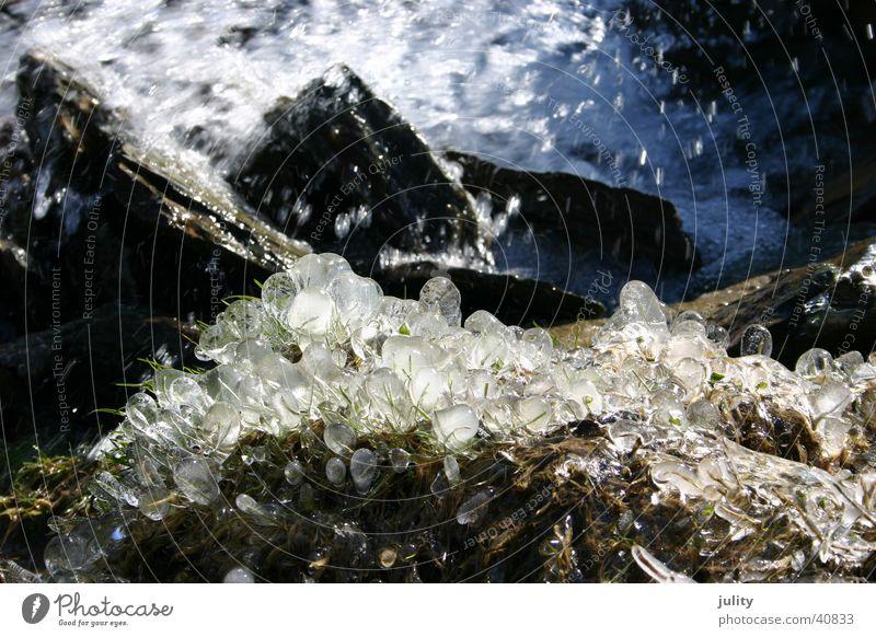 eis & wasser blau grün Wasser kalt Frühling Gras Küste Stein Eis Wassertropfen nass Kugel Bach frieren