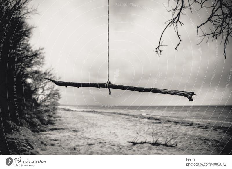 Heute einfach mal am Strand abhängen Ostsee Regen Seil Ast hängend Meer chill chillen entspannen entspannend Küste Himmel Ostseeküste Natur Landschaft