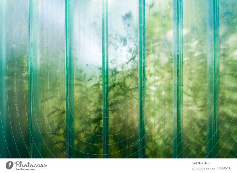 Glaswand Natur Ferien & Urlaub & Reisen Pflanze Sommer Landschaft Blatt Umwelt Gras Freiheit Garten Park Wetter Freizeit & Hobby Klima Tourismus Schönes Wetter