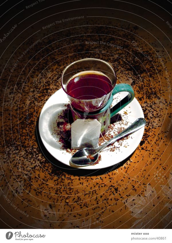 teatime gemütlich Brunch Winter Tee heißer Tee Wärme