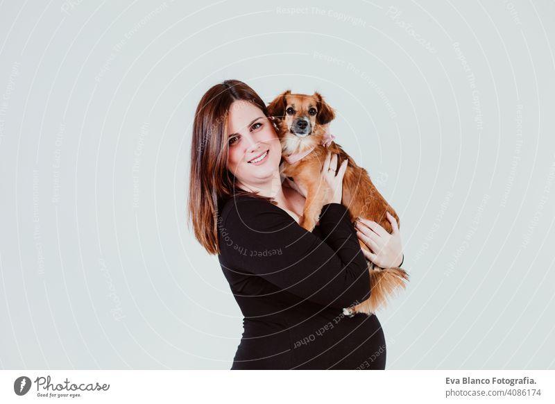 junge schwangere Frau von 21 Wochen zu Hause mit ihrem niedlichen kleinen Hund. Familie Konzept Mutterschaft Elternschaft Baby erwartend Schwangerschaft