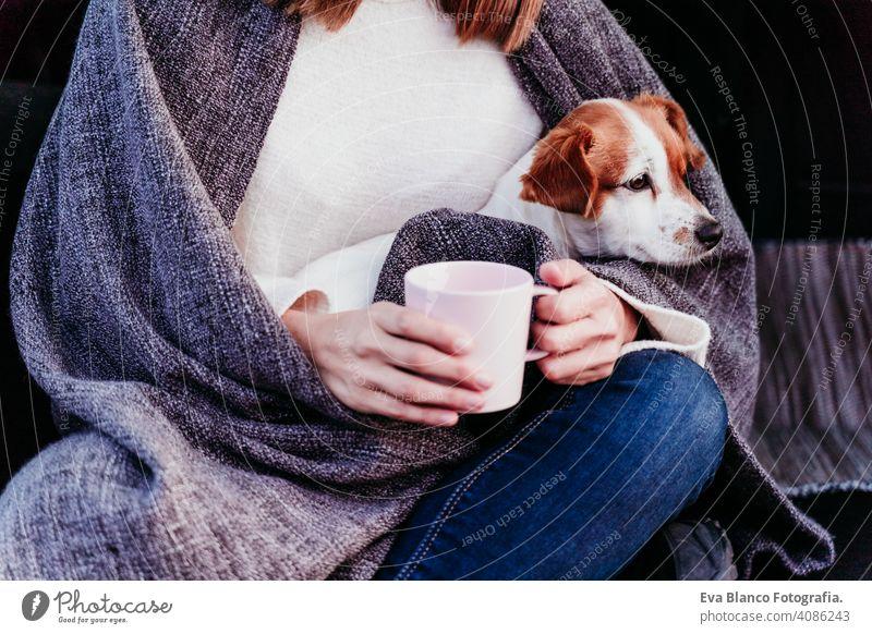 Frau und niedlichen Jack Russell Hund genießen im Freien am Berg in das Auto. Reise-Konzept. Wintersaison. Nahaufnahme PKW Schnee Berge u. Gebirge reisen