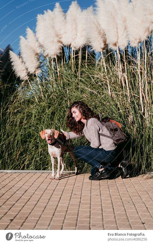 junge Frau und ihr Hund im Freien in einem Park. sonniger Tag, Herbstzeit Liebe Haustier Besitzer schön Glück Lächeln gemischte Rasse Reinrassig züchten