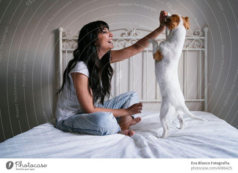 junge kaukasische Frau auf dem Bett mit ihrem niedlichen kleinen Hund spielen und geben ihm Leckereien. Liebe für Tiere Konzept. Lebensstil im Innenbereich