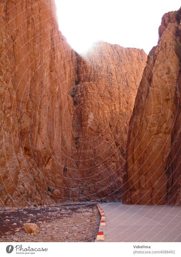 Todraschlucht im Hohen Atlas, Marokko Weg Afrika Nordafrika Hoher Atlas Atlasgebirge Schlucht Tal canyon klamm atlas rot rosa felse felsen steil landschaft