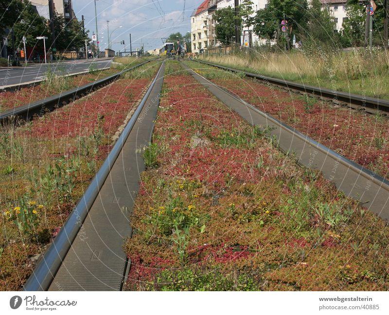 BerlinPrenzlauerBerg Gleise Stadt Straßenbahn Ferne Sehnsucht Ferien & Urlaub & Reisen