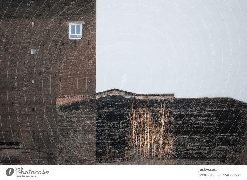 alte Mauer trifft neue Fassade Brandmauer Fenster Backstein Strukturen & Formen Architektur Zahn der Zeit verwittert trist Symmetrie Stil Silhouette
