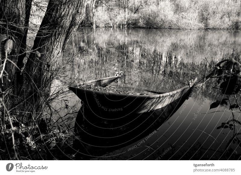 halb versunkenes Boot alt Laub Baum Außenaufnahme Wald Landschaft Tag verlassen vergessen Wasserfahrzeug anglerboot Wasserspiegelung Fischerboot verloren
