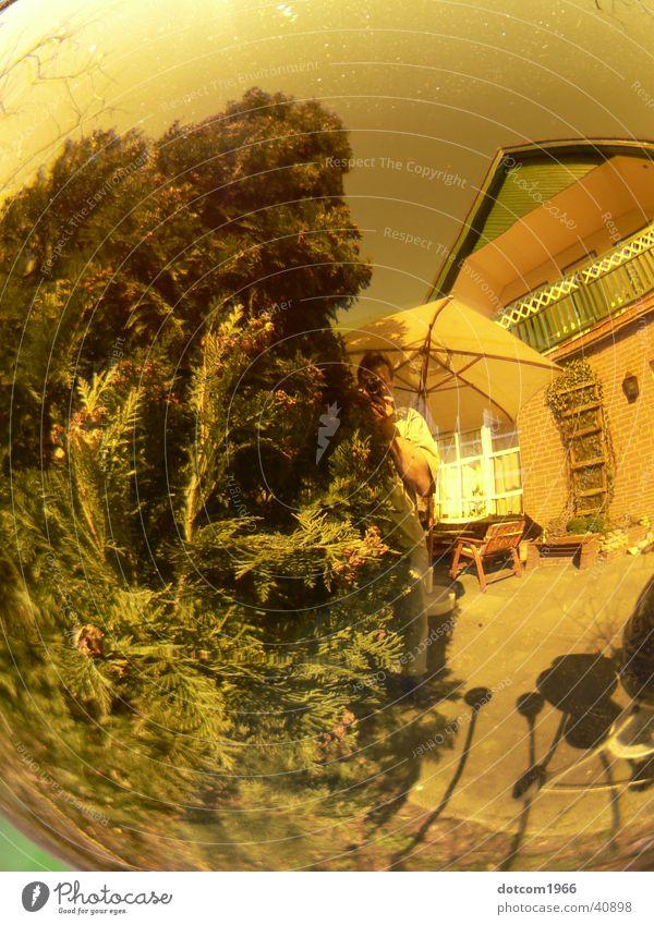 Kugelwelt Sommer gelb Garten Häusliches Leben Kugel Terrasse
