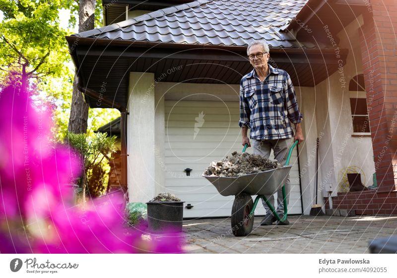 Älterer Mann schiebt Schubkarre bei der Arbeit in seinem Garten Senior älter Großvater alt Rentnerin in den Ruhestand getreten gealtert reif heimwärts Haus