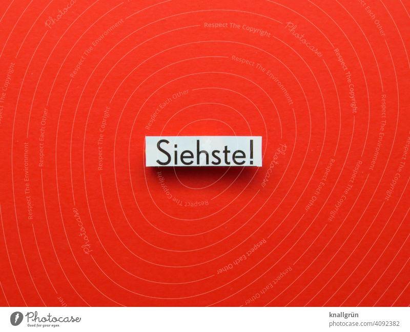 Siehste! Wissen Bestätigung gewusst wie Buchstaben Satz Letter Text Schriftzeichen Kommunikation Typographie Wort Mitteilung Sprache Menschenleer Kommunizieren