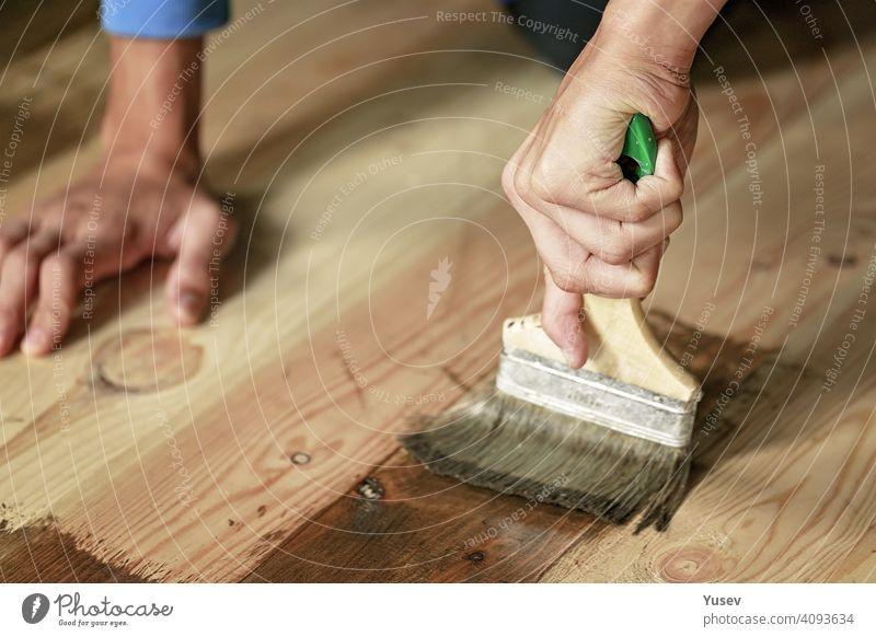 Anmutige Hand hält einen Pinsel. Lackieren Sie den Boden, Wohnung Renovierung. Hausarbeit, Heimwerker, aktiver Lebensstil. Nahaufnahme. zierlich Kaukasier
