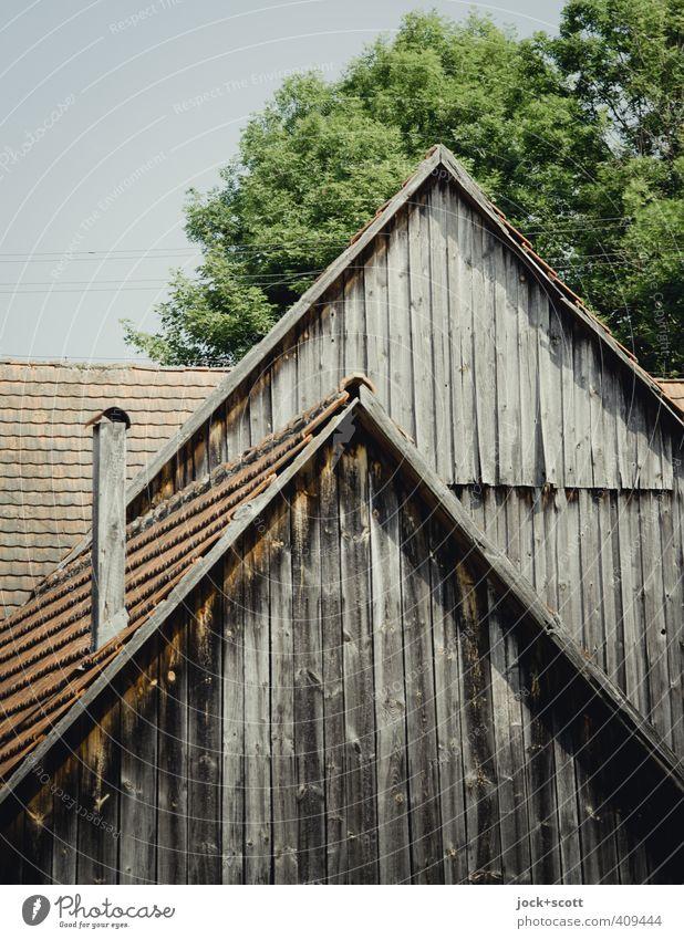 Stall & Stall Architektur Schornstein Holz alt authentisch Vergänglichkeit verwittert Holzbrett Dachziegel Dachgiebel Tradition ausgebleicht Strukturen & Formen