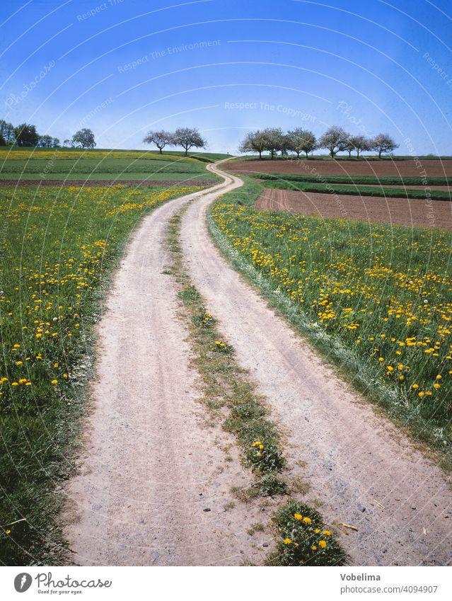 Feldweg im Odenwald Weg SOMMER Landleben Hessen Acker Felder richtung linie kurve baeume fruehling fruehjahr landschaft deutschland europa