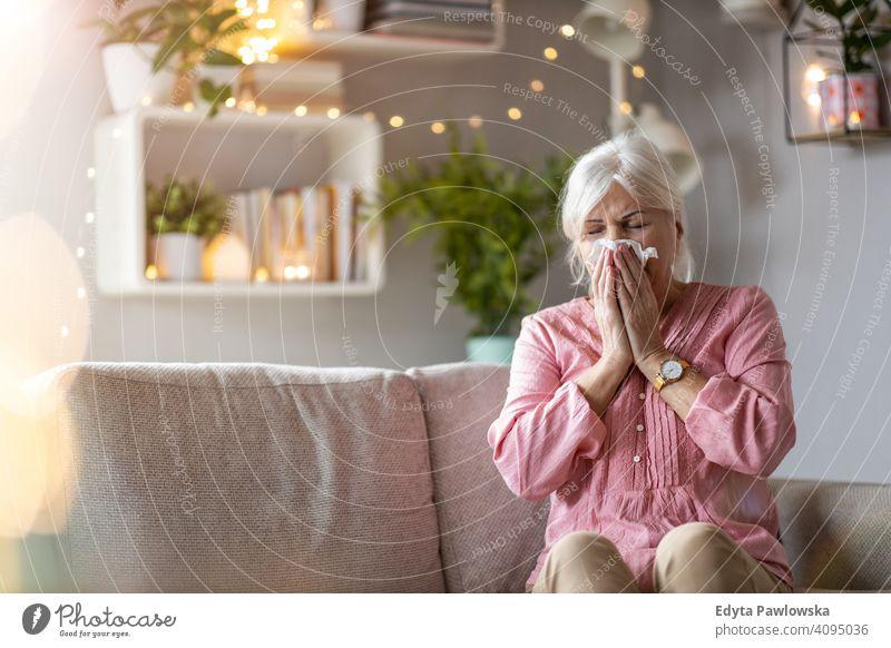 Seniorin schnäuzt sich die Nase Frau Menschen eine Person reif Rentnerinnen in den Ruhestand getreten alt älter graues Haar Kaukasier Erwachsener Lifestyle