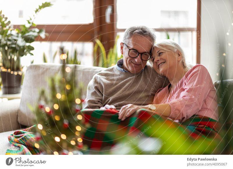 Älteres Paar, das in der Weihnachtszeit zusammen im Wohnzimmer sitzt Menschen Frau Erwachsener Senior reif lässig attraktiv männlich Mann Lächeln Glück