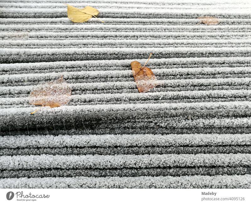 Raureif und Herbstlaub bei Minusgraden im Herbst auf gestapeltem Baumaterial im Freien in Lemgo bei Detmold in Ostwestfalen-Lippe Reif Frost Kälte Winter