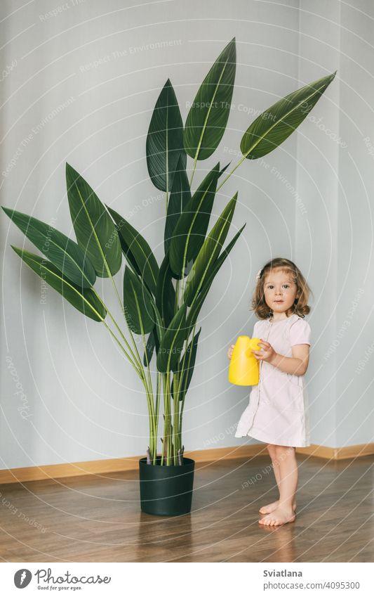 Kleines Mädchen gießt Blumen zu Hause, hilft bei der Pflege von Pflanzen Kleinkind Kind wenig heimwärts Wasser niedlich Bewässerung Dose kleiner Blumenladen