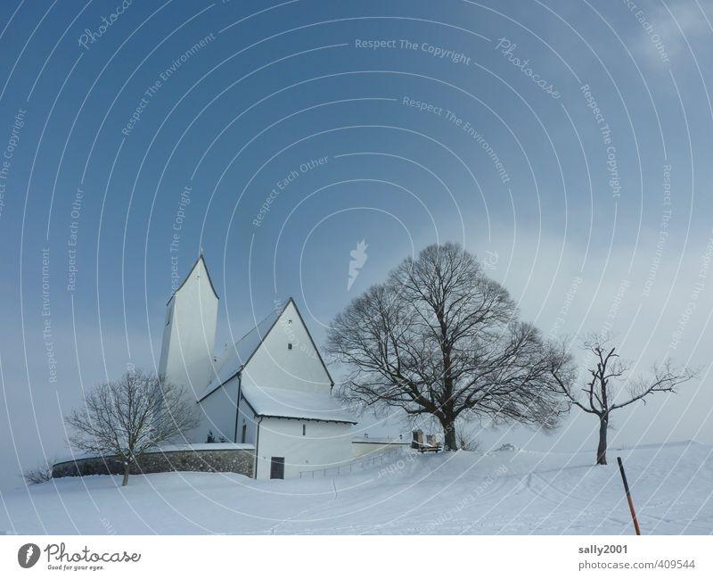 eisige Ruhe Winter Schönes Wetter Eis Frost Schnee Baum Dorf Menschenleer Kirche Kirchturm frieren weiß Sicherheit Schutz trösten ruhig Glaube Traurigkeit