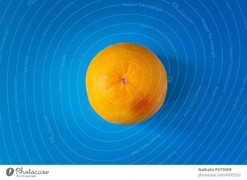 Draufsicht gelbe Grapefruit auf blauem Hintergrund Pampelmusen Zitrusfrüchte Pamplemousses Frucht Farbfoto Lebensmittel Ernährung lecker Vitamin saftig frisch