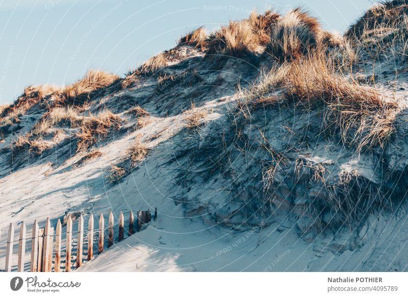 Dünen an der Opalküste in Frankreich Küste MEER Strand Nordsee Sand Meer Nordseeküste Landschaft Außenaufnahme Farbfoto Tourismus Tag Ferien & Urlaub & Reisen