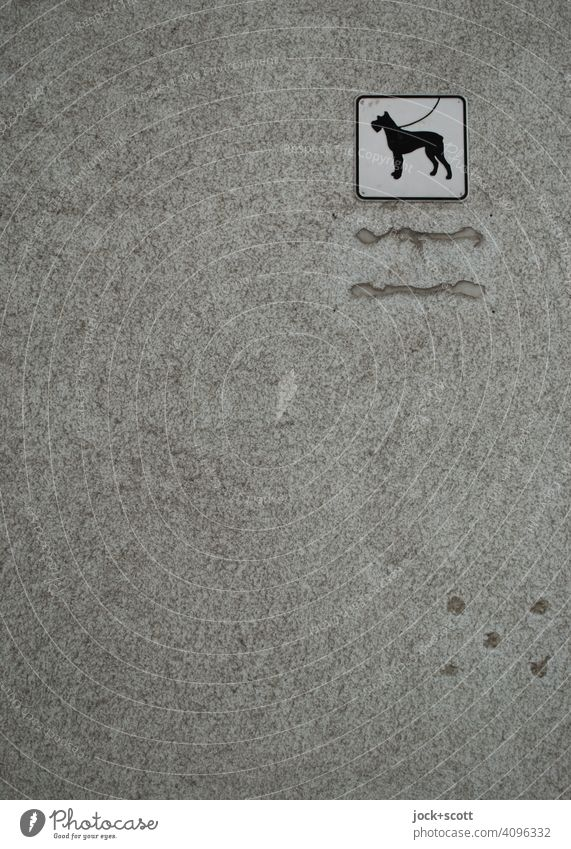 Hinweis ohne Worte. Hunde sind an der Leine zu führen Hinweisschild Piktogramm grau Monochrom Putz Quadrat Wand Zahn der Zeit verwittert verspachtelt einfach