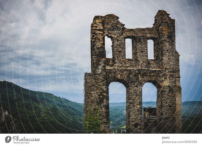 Alte Ruine Grevenburg an der Mosel Mosel (Weinbaugebiet) Moselsteig moseltal Fluss wandern Wanderer Moseltal Idylle Rheinland-Pfalz Traben-Trabach Weinberg