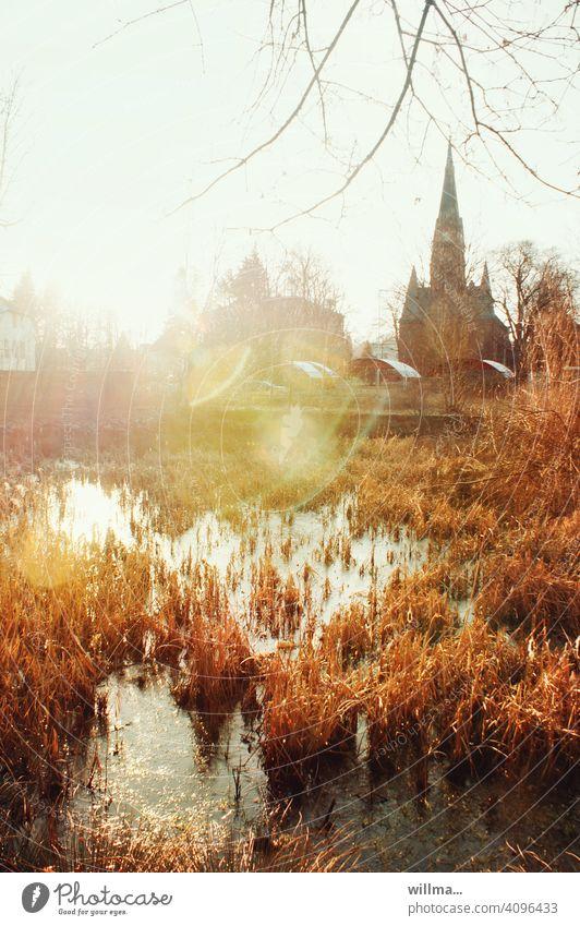 Eine Kirche. Ein Teich. Im Gegenlicht. Ach, und Schilf ist auch mit drauf ... kahl Frühling November