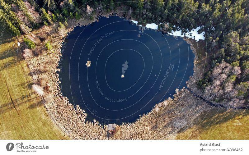 Luftaufnahme mit einer Drohne im Frühling von einem kleinen See mit Graugänsen in Bayern luftaufnahme drohnenfoto see gewässer wasser moorsee frühling herzform
