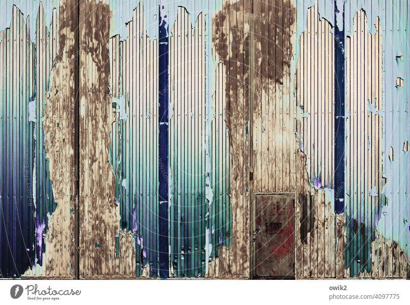 Kontor Wellblechwand Lagerhalle Metall Farbe abblättern schadhaft Farbstoff glänzend Tür Menschenleer alt Außenaufnahme Farbfoto Detailaufnahme Tag