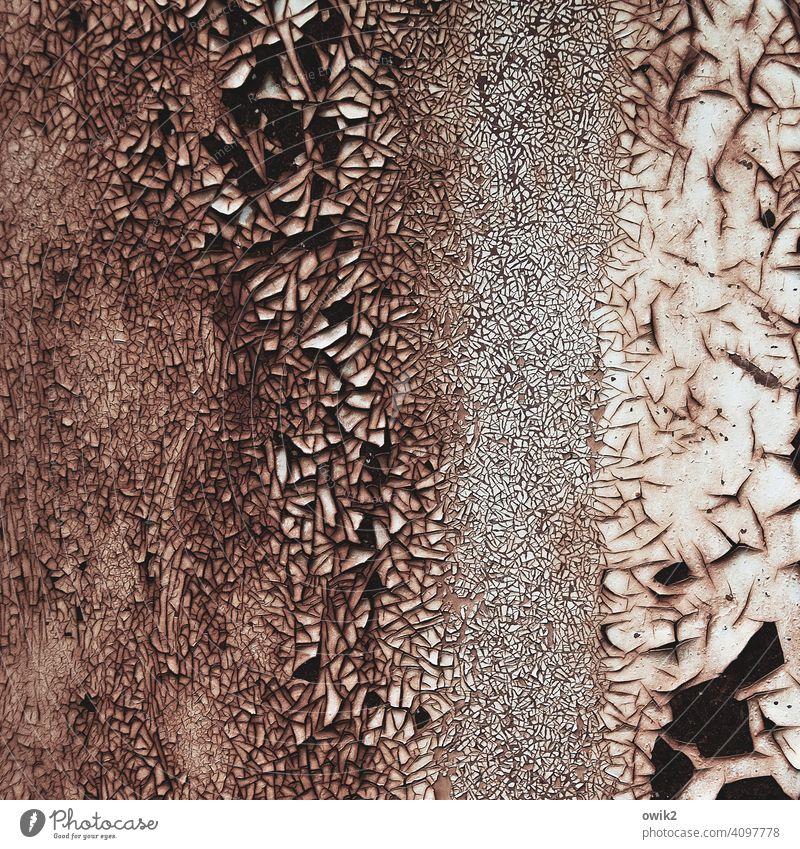 Der Fluss der Zeit Rost Metall alt Strukturen & Formen abblättern Farbfoto Außenaufnahme Detailaufnahme Menschenleer Verfall Vergänglichkeit Zerstörung Muster