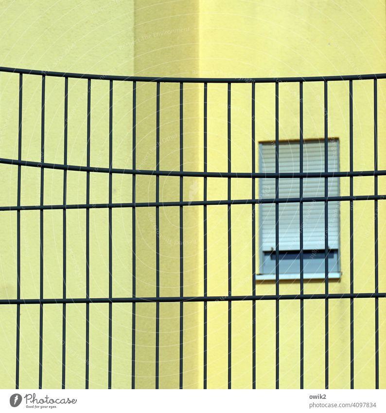 Alles unter Kontrolle Gitter Wand Fenster zitronengelb geschlosse Absperrung Barriere Sicherheit abweisend Schutz Strukturen & Formen Zaun Baustelle Metallzaun