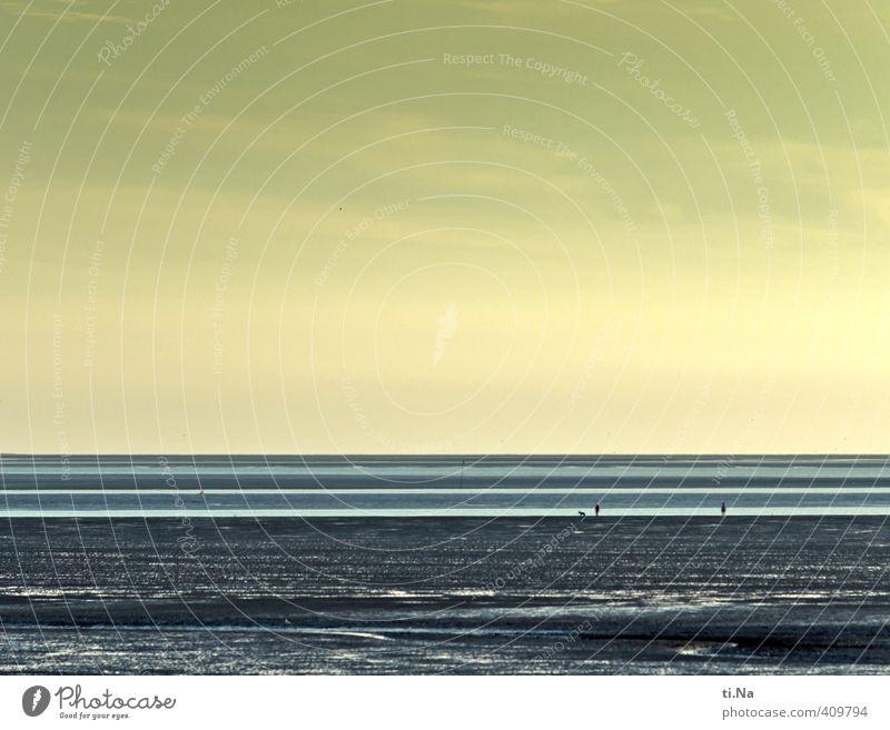 Wattwandern auf zwei und vier Beinen Erde Luft Wasser Himmel Wolken Horizont Sommer Schönes Wetter Küste Nordsee Wattenmeer Priel Gesundheit nass natürlich blau