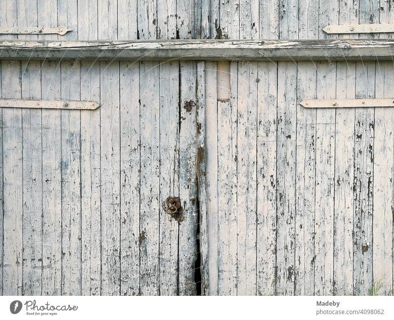 Schönes großes altes Scheunentor mit abblätternder weißer Farbe in Lage bei Detmold in Ostwestfalen-Lippe Bauernhof Bauernhaus Stall Landwirtschaft Tor Holztor