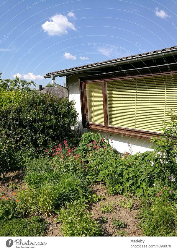 Großes Blumenfenster mit Jalousie in Gelb eines Wohnhaus der Fünfziger Jahre mit großem grünen Garten im Sommer bei Sonnenschein in Wettenberg Krofdorf-Gleiberg bei Gießen in Hessen