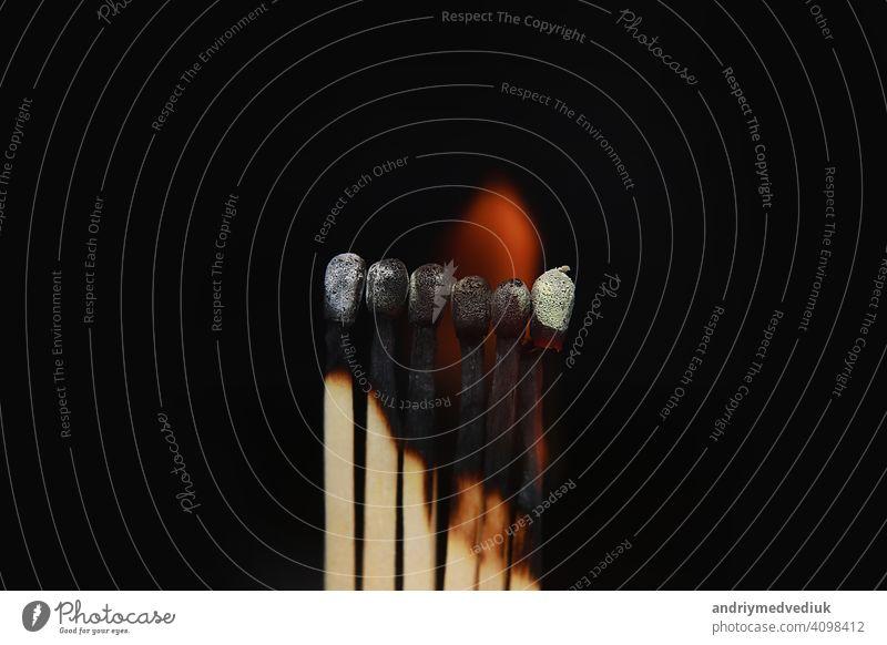 Brennende Streichhölzer auf schwarzem Hintergrund. Streichhölzer auf Feuer in der Reihe der Verbrennung ist Sequenz, während ein Streichholz bleiben unten von brennenden zu vermeiden, Feuer zu verbinden vor schwarzem Hintergrund