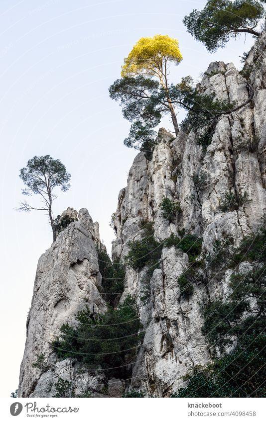Calanque d'En-Vau CALANQUES Cassis Berge u. Gebirge Mittelmeer Küste Felsen Ferien & Urlaub & Reisen Tourismus Landschaft Natur Südfrankreich