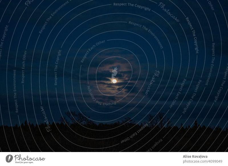 Nachthimmel himmelblau Mond Mondschein dunkel Dunkelheit Landschaft Himmel wolkig bewölkter Himmel Natur Wolken Farbfoto Licht Stimmung