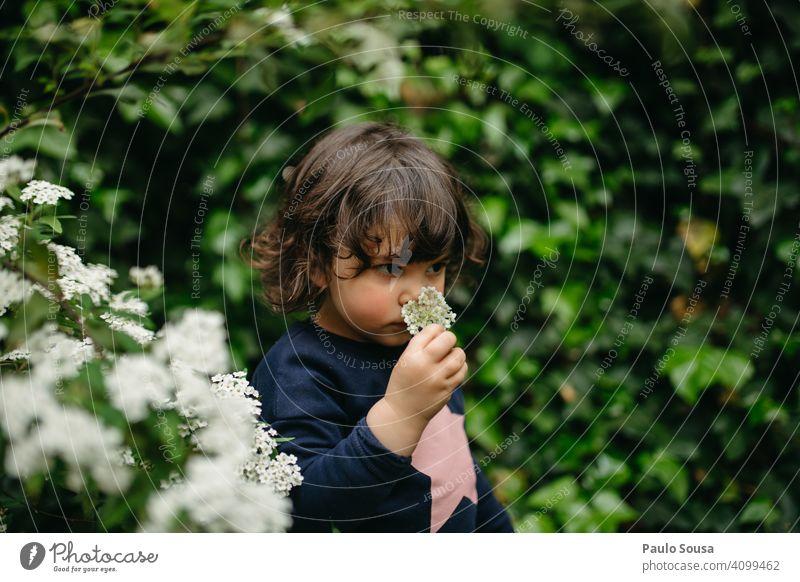Nettes Mädchen riecht Blume 1-3 Jahre Kaukasier riechen riechend Frühling Frühlingsgefühle Frühlingsblume Neugier erkunden Farbfoto Außenaufnahme Kind Natur Tag