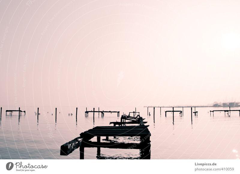 Rügen im Nebel Himmel Natur Wasser Sonne Landschaft ruhig Umwelt Herbst Holz See rosa Idylle Nebel leuchten Schönes Wetter Seeufer