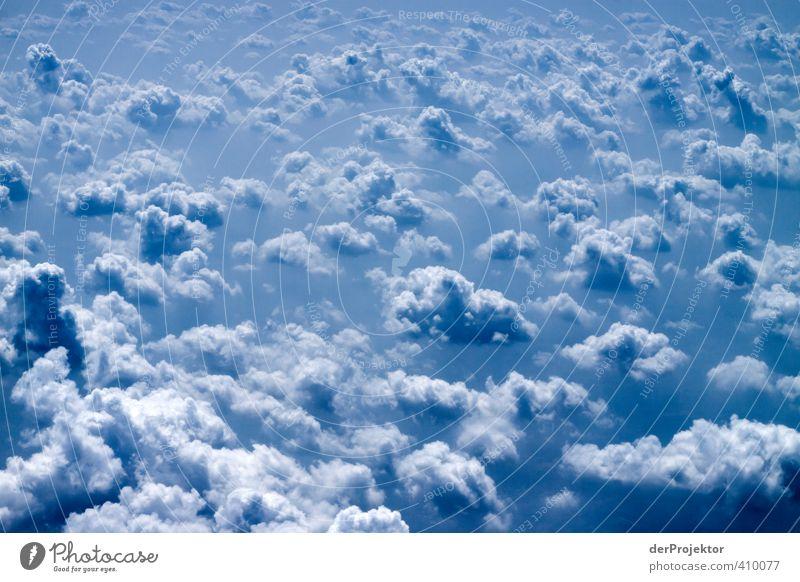 Wolkenbilder gehen immer... Umwelt Natur Urelemente Luft nur Himmel Winter Klima Schönes Wetter Verkehr Luftverkehr Flugzeug im Flugzeug Gefühle Stimmung Freude